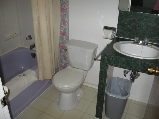 Traveller's Rest Motel: bathroom