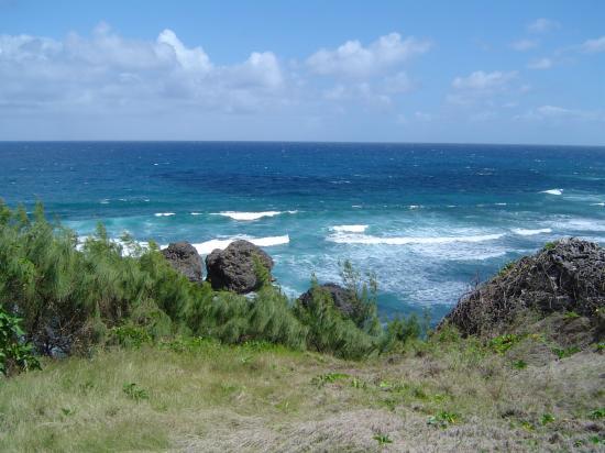 Bathsheba Beach: Bathsheba