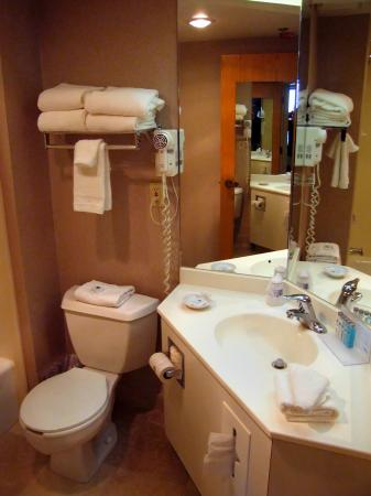 Hampton Inn Syracuse North (Airport Area): Room 109 compact bathroom