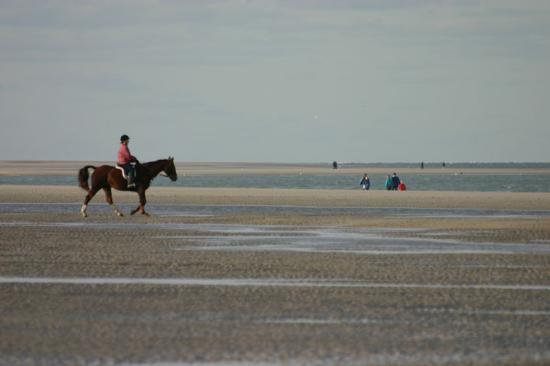 Renesse, The Netherlands: Great Beach