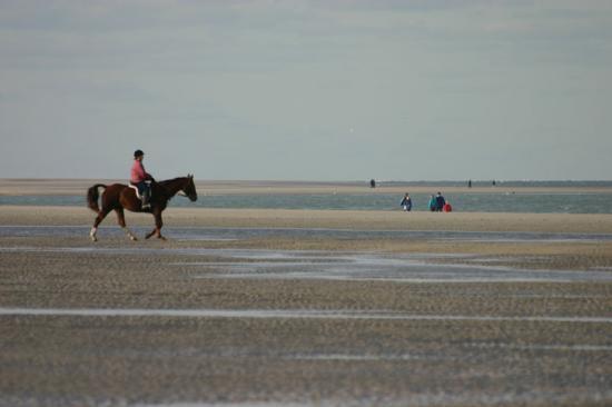 Renesse, Nederland: Great Beach