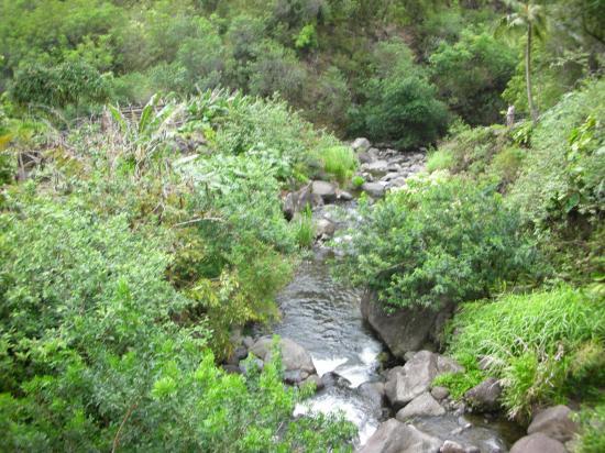 Wailuku, HI: Iao water