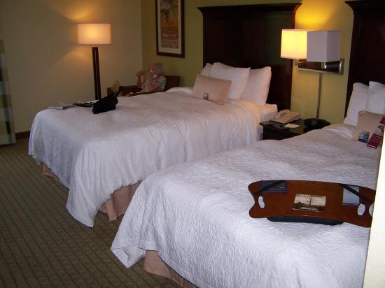 Hampton Inn Central Naples: Room with 2 Queen Beds