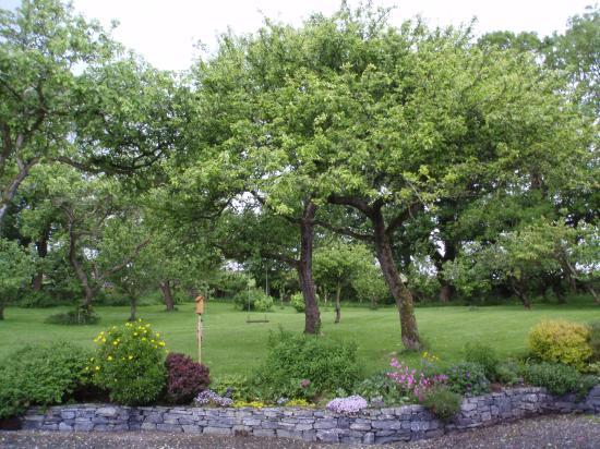Trean House: The beautiful garden