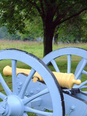 Valley Forge, PA: Cannon on battlefield