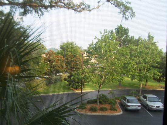 Courtyard Gainesville: Grounds