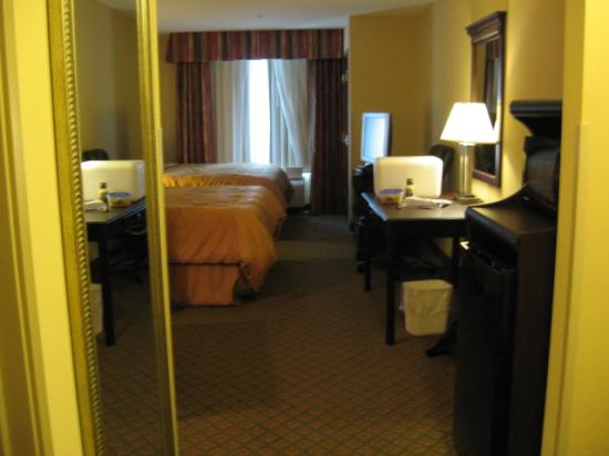 Comfort Suites: Clean, spacious room