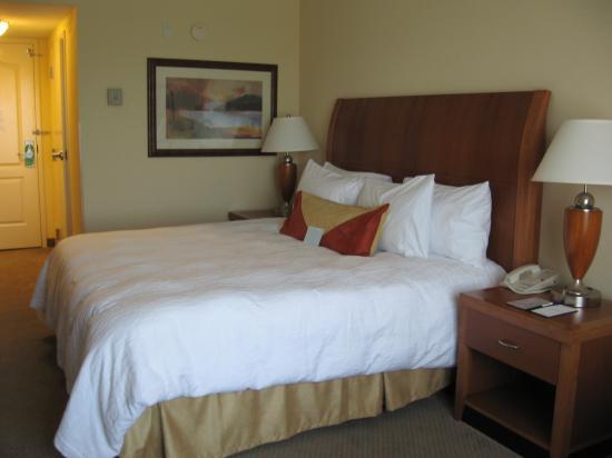 Hilton Garden Inn Albany: Big, comfortable bed