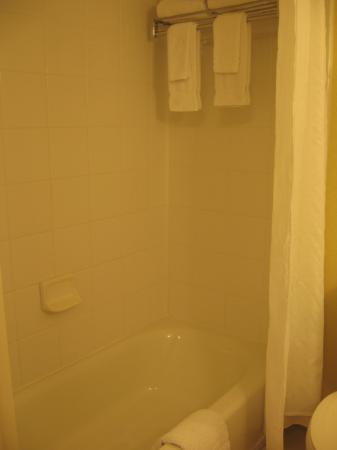 Hilton Garden Inn Albany: Clean bathroom