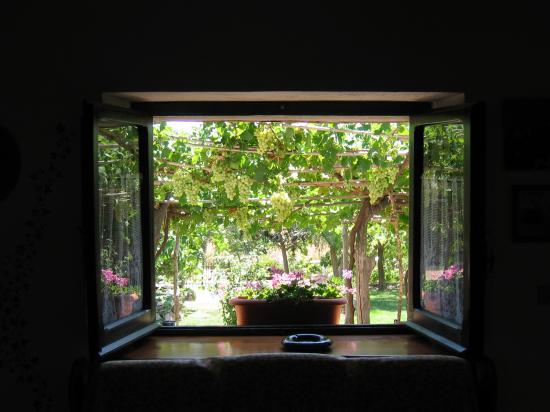 Vista della finestra sul porticato del b b su masoni for Piano del telaio della finestra