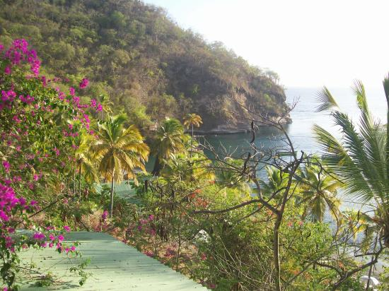 Afternoon View from Piton Bar/Restaurant