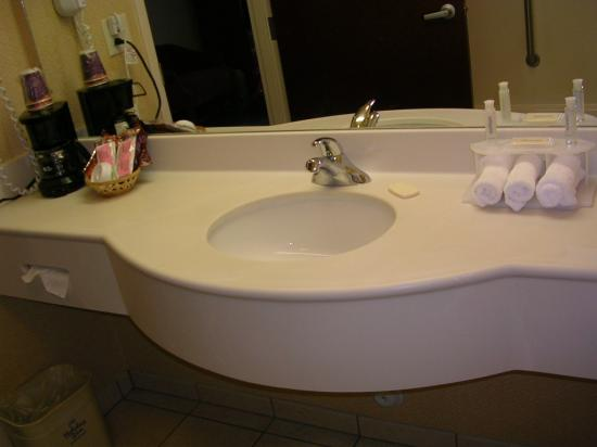 Holiday Inn Express & Suites High Point South: Bathroom Sink