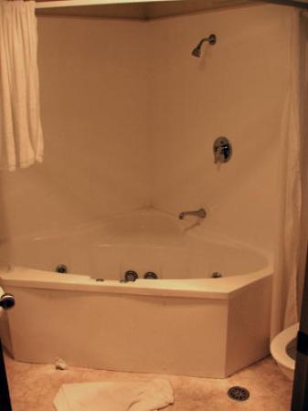 BEST WESTERN BK's Pioneer Motor Lodge: Spa bath