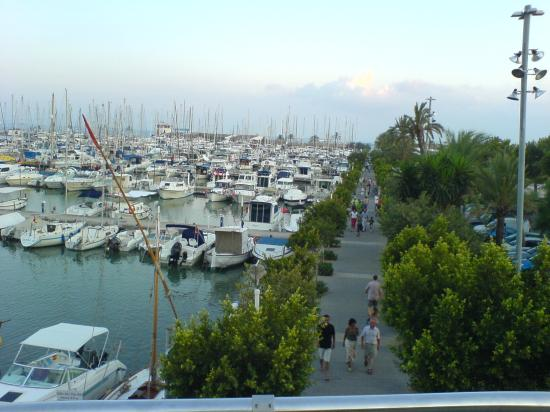 Sol de Alcudia Apartments: port of alcudia