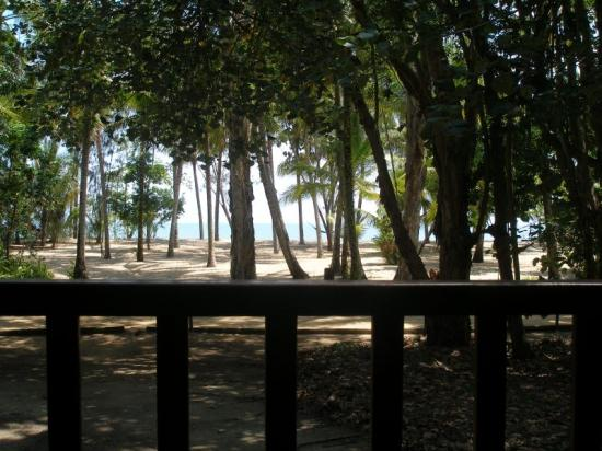 Kewarra Beach Resort & Spa: View of beach from our porch