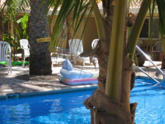 Coco Cabanas Loreto: More poolside
