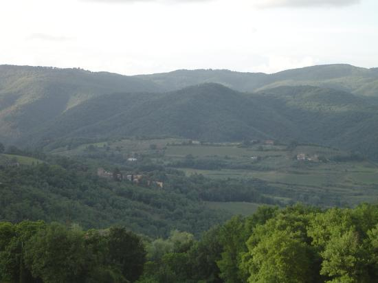 Photo of La Ghiandaia Greve