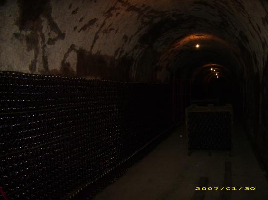 Champagne Guy Charbaut: wine cave