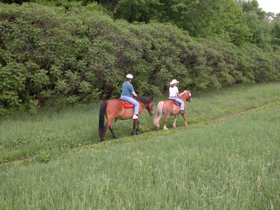 Farm by the River Bed and Breakfast with Stables: easy day on the trail