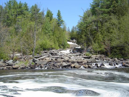 ragged falls from the canoe picture of algonquin. Black Bedroom Furniture Sets. Home Design Ideas