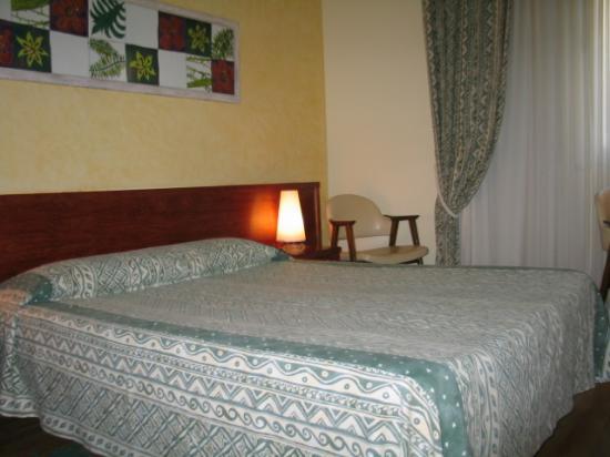 Hotel Rosa : Room