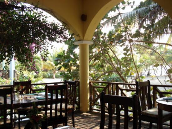 Hamanasi Adventure and Dive Resort: Dining Porch