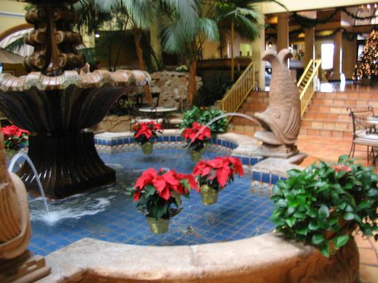 Embassy Suites by Hilton Denver Stapleton : Christmas Decorations
