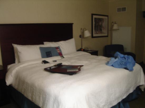 Hampton Inn South Plainfield-Piscataway: Average 1 bed room at the Hampton Inn (South Plainfield-Piscataway)