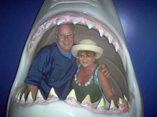 Virginia Aquarium & Marine Science Center: Chesapeake Bay Aquarium