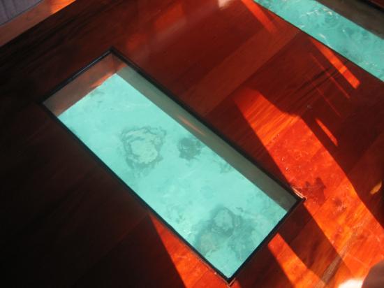 Likuliku Lagoon Resort: clear floors to see coral and fish