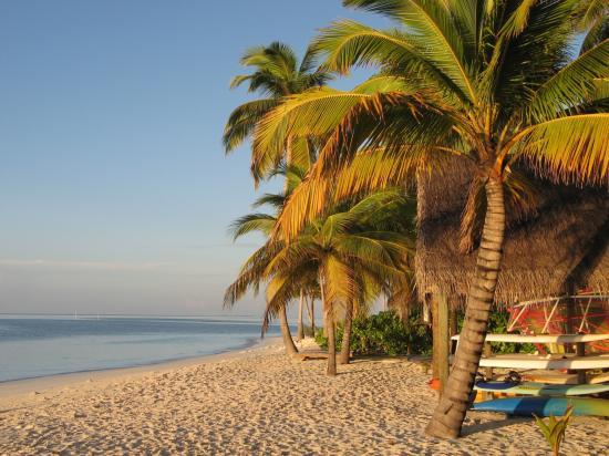 Mirihi Island Resort: View en route to Breakfast