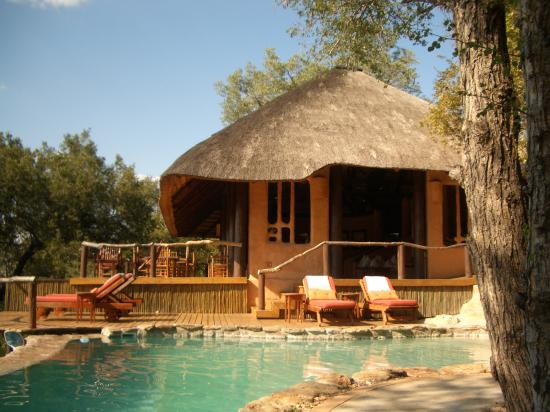 Garonga Safari Camp: Main lodge / swimming pool