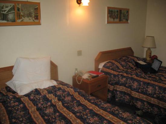 Du Chevalier Motel & Suites : Room