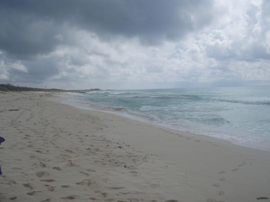 Presidente Inter-Continental Cozumel Resort & Spa: Punta Sur Beach