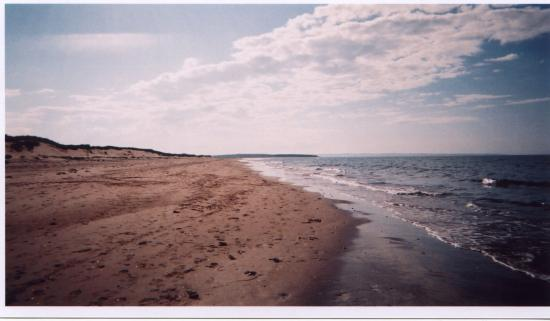 York Bay Place: Beach at PEI National Park