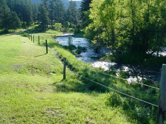 Nemo, SD: The trout stream that runs through the horse camp