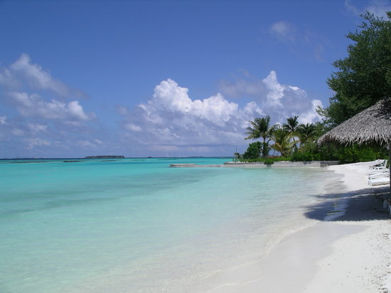 Sheraton Maldives Full Moon Resort & Spa : Beach a few steps from our beach hut