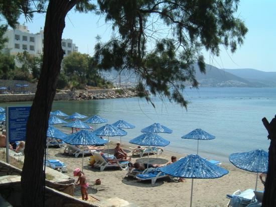 Azka Otel : Your private beach