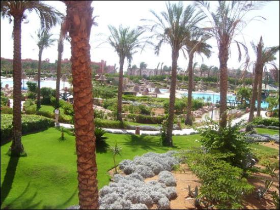 Parrotel Aqua Park: Hotel Gardens