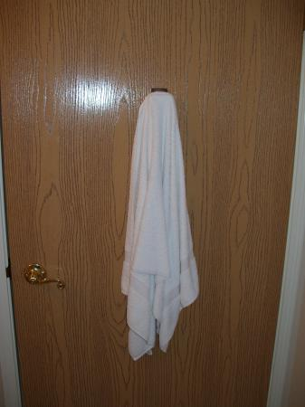 FairBridge Inn & Suites Miles City: There was a dirty towel behind the bathroom door that was not noticed by the cleaning staff