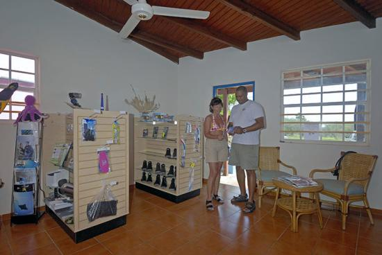Blue Divers Resort: Diveshop