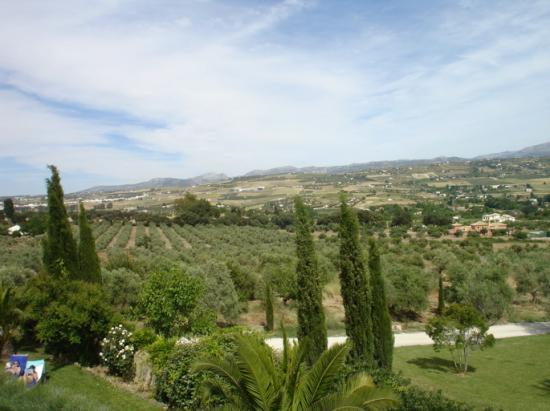 Hotel La Fuente De La Higuera: View from room terrace