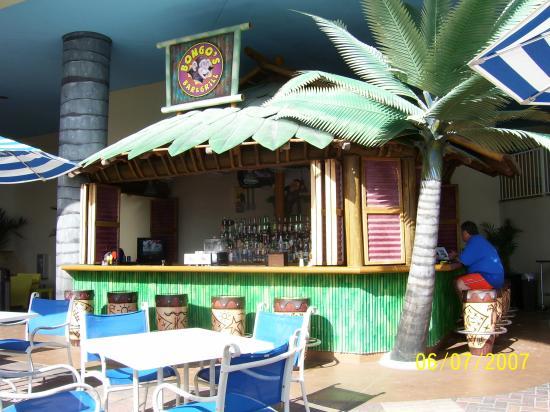 Pink Shell Beach Resort & Marina: Bongo's Bar