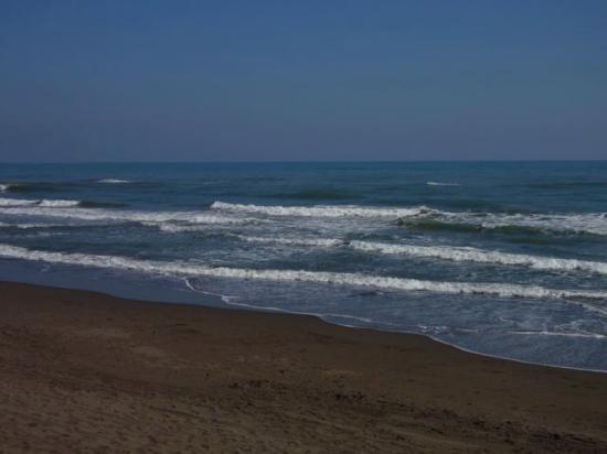 Hotel Azucar: Beach