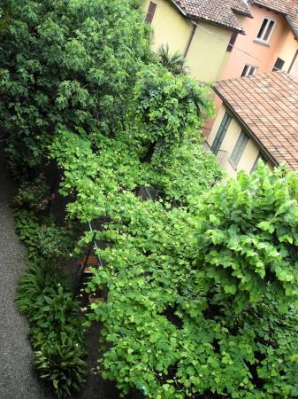 Albergo Giardinetto: the garden