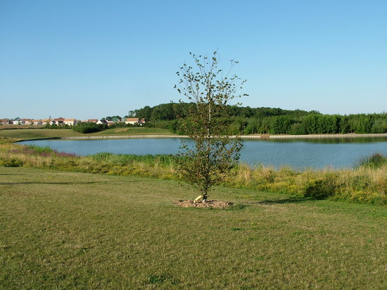 Magny-le-Hongre, Francia: Picture of the Lake/Pond at back