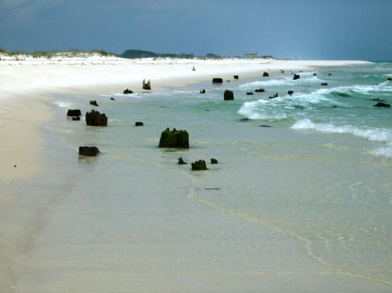 Shell Island Cruise Picture Of Destin Florida Panhandle