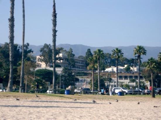 Castillo Inn at the Beach: View beach