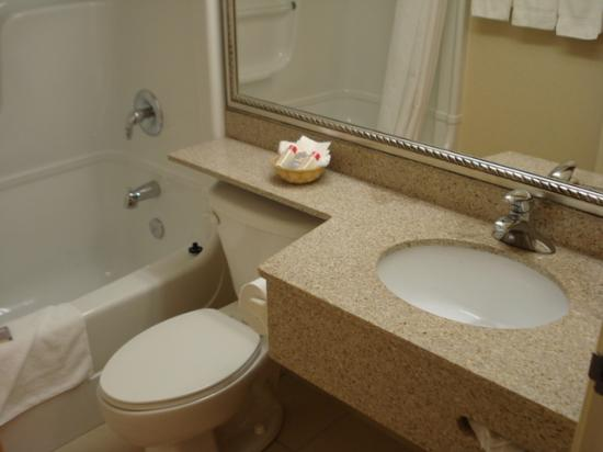 Econo Lodge Inn & Suites Downtown: bathroom1