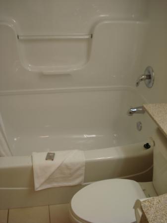 Econo Lodge Inn & Suites Downtown: bathroom2